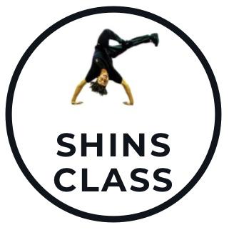 Shins Class